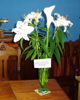 Lilies in Commemoration